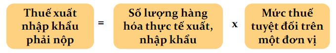 mat-hang-ap-dung-thue-suat-tuyet-doi