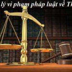 Xử lý vi phạm pháp luật về Thuế